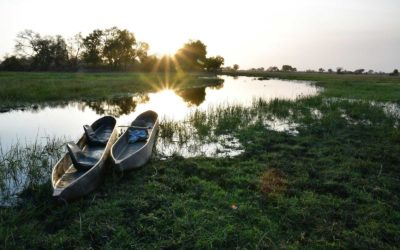 About the Okavango Delta
